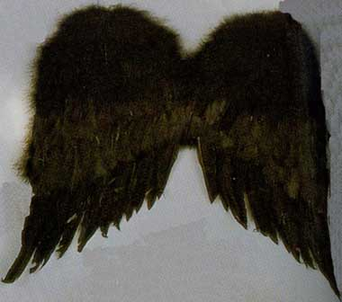 Black Feather Wings - 22 inch-0